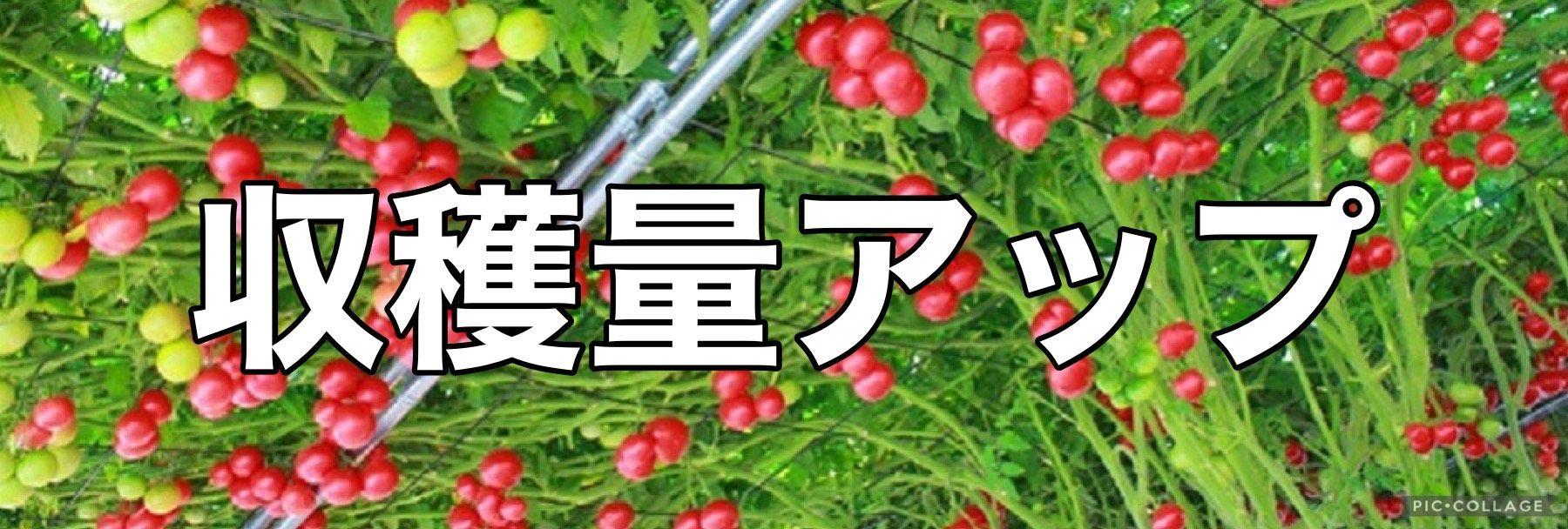 マイクロバブル製品 取扱い専門店【農業・水産・美容】
